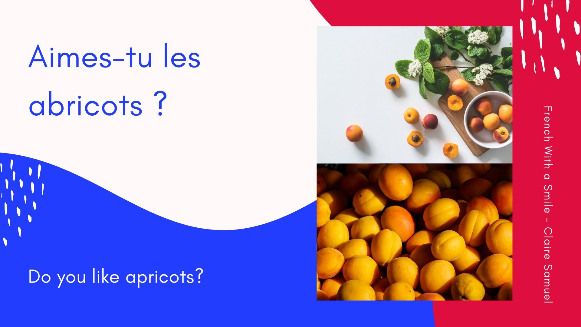 Beginner #11 Fruits vocabulary in #French easy #sentences