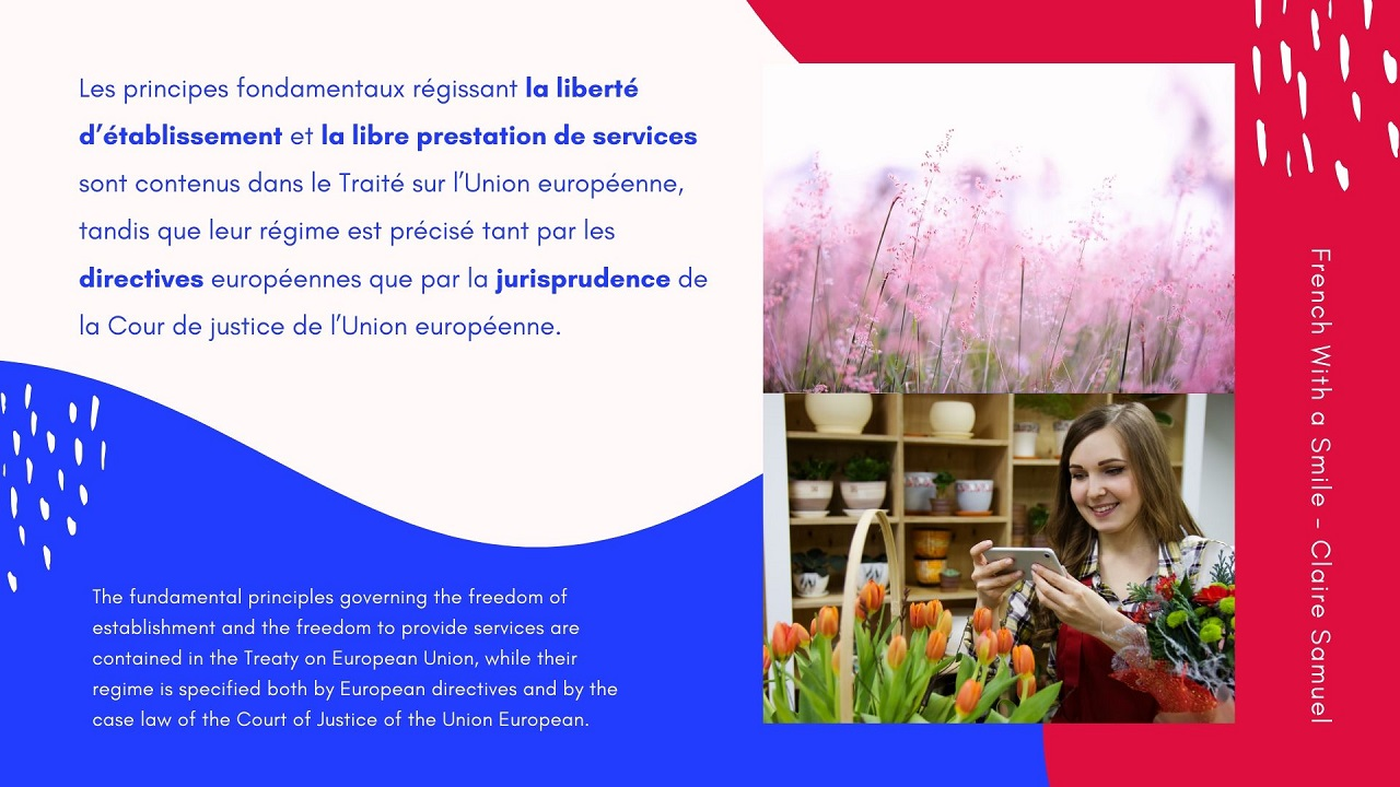Advanced #27 Freedom of establishment and to provide services in the EU