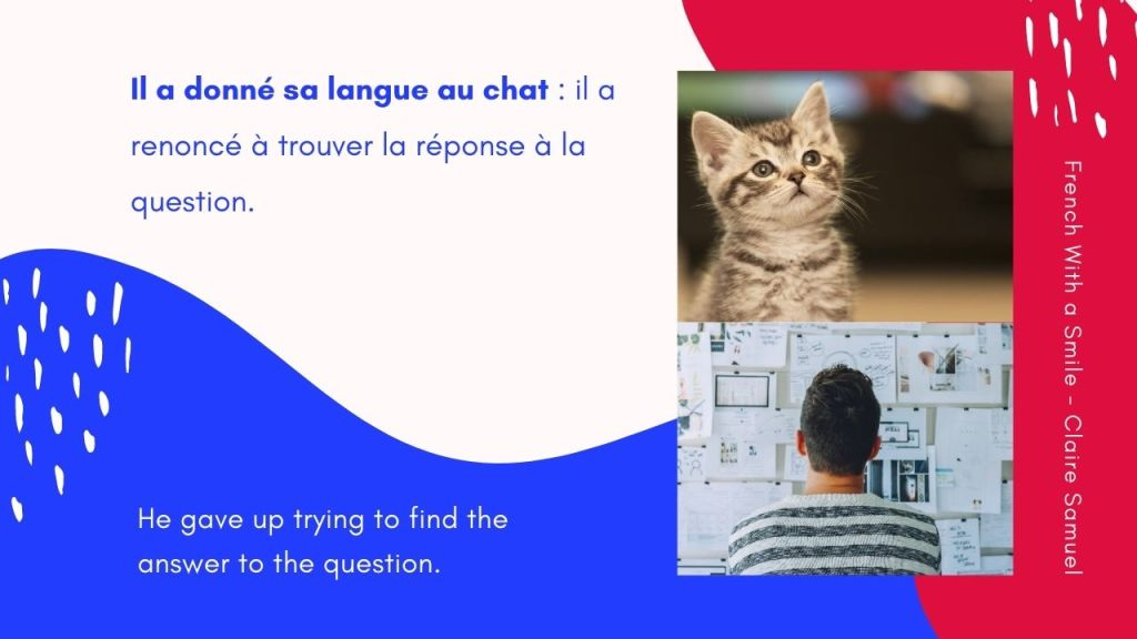 Intermediate #60 Funny French expressions